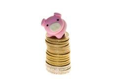 Porcellino salvadanaio sulle euro monete Fotografie Stock Libere da Diritti