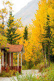 Porch Along Mountain Trail Fall Leaves Changing Stock Image