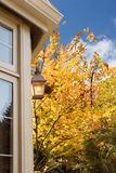 Porch light fall foliage Royalty Free Stock Image