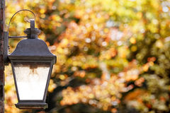 Porch light with fall foliage Stock Images