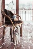 Porche de cabine de rondin avec la neige image stock