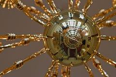 Porcher para arriba Fotografía de archivo libre de regalías