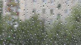 Porción de descensos del agua en ventana almacen de video