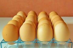 Porción de huevos en fila, opinión de perspectiva Foto de archivo