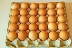 Porción de huevos en fila, opinión de perspectiva Fotografía de archivo libre de regalías