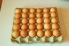 Porción de huevos en fila, opinión de perspectiva Imagen de archivo libre de regalías