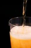 Porción de la cerveza Fotografía de archivo