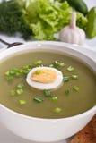 Porción de la sopa de la crema de la espinaca con los vehículos Foto de archivo