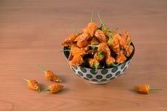 Porción de pequeñas pimientas de chiles secadas en cuenco de cerámica floral Imagen de archivo libre de regalías
