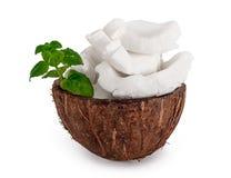 Porción del coco Imagen de archivo libre de regalías