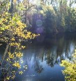 Porción del río Fotos de archivo libres de regalías