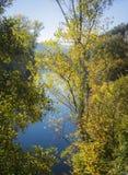 Porción del río Imagen de archivo