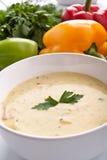 _porción of poner crema sopa Foto de archivo libre de regalías