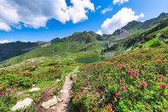 Porcile lakes in the brembana valley on the Orobie Alps.  royalty free stock photo