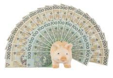 Porcin avec de l'argent Photo stock