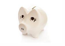 Porcin-banque blanche Photos stock