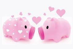 Porcin dans l'amour Photo stock