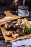 Porcini和溜滑杰克蘑菇 免版税库存照片