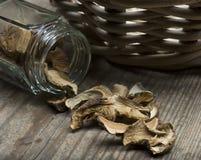 porcini высушенных грибов Стоковое Фото