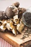porcini высушенных грибов Стоковая Фотография
