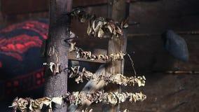 Porcini champinjoner som torkas av inomhus öppen brand lager videofilmer
