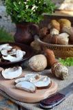 Porcini Cogumelo branco desbastado na placa de corte de madeira Cogumelos selvagens comestíveis Preparação de alimento Cópia s da Fotografia de Stock