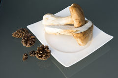Porcini Stock Images