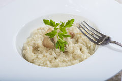 Porcini mushroom risotto Stock Photo
