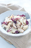 Porcini mushroom salad with celery, radicchio and Parmesan from royalty free stock photos
