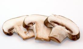 Porcini Mushroom Slices On White Background. Three porcini mushroom slices on a white background Royalty Free Stock Image