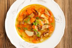 Porcini mushroom soup with potato and carrot in white plate on w Stock Photography