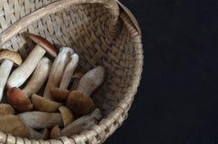 Porcini mushrooms in a basket on a black background