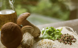 Porcini mushrooms and Cooking spices vintage on Windows light Royalty Free Stock Image