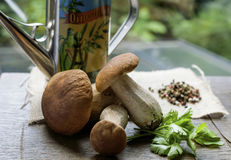 Porcini mushrooms and Cooking spices vintage on Windows light Royalty Free Stock Photos
