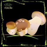 Porcini mushrooms Stock Images