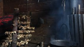 Porcini-Pilze, die durch offenes Innenfeuer getrocknet werden stock video