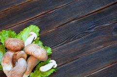 Porcini and salad on dark wooden background. Rustick stile. Food. Concept Stock Photography