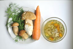Porcini, sopp, soppa med porcini och grönsaker Arkivbilder