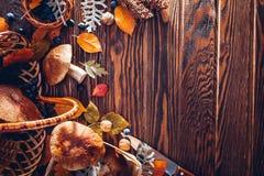 Porcinipaddestoelen in mand met bessen en noten op houten lijst Gewas van de de herfst het oogst Verzamelde daling ruimte royalty-vrije stock fotografie