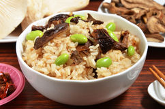 Porcino rice Royalty Free Stock Photography