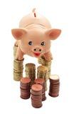 Porcino sulle colonne delle monete Immagine Stock