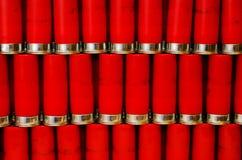Porciones de 12 shelles del calibrador Foto de archivo libre de regalías