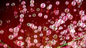 Porciones de burbujas de jabón almacen de video