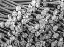 Porciones de clavos Imagen de archivo