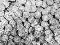 Porciones de clavos Fotografía de archivo