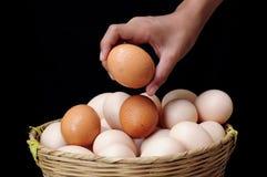 Porciones de huevos Foto de archivo