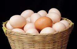 Porciones de huevos Foto de archivo libre de regalías