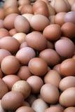 Porciones de huevos. Foto de archivo