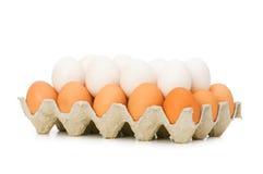 Porciones de huevos en el cartón Imagen de archivo libre de regalías