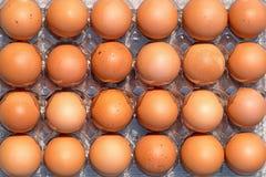 Porciones de huevos frescos marrones del pollo Visión superior Foto de archivo